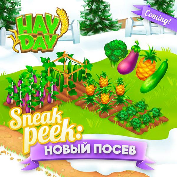 Sneak Peek #1 - новый посев в Hay Day